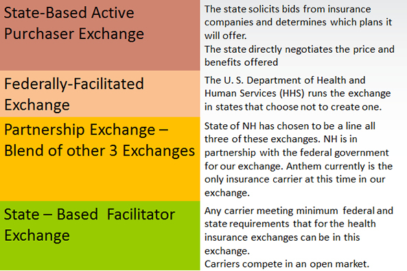 Four types of exchange model options