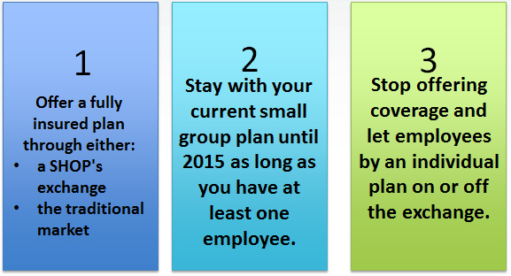 Three options for employers for health insurance in 2014