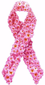 Women's Health Highlighted in Pink During October